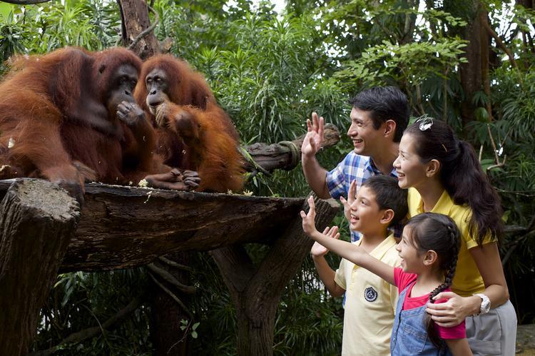 5 необычных мест, посетив которые вы уже никогда не пойдете в московский зоопарк