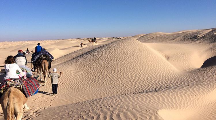 Гид из Туниса: «Русские спасают наш туризм, но тунисцам этого мало»