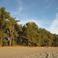 Вот такой январский пляж в Пицунде.