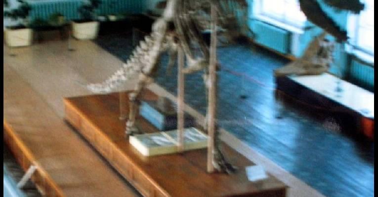 Динозавр. Жизнь после смерти