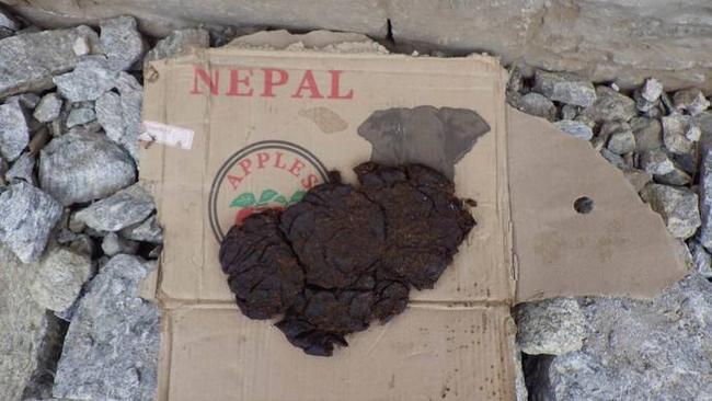 Негласный символ Непала - кизяк