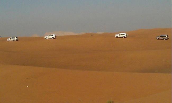 ОАЭ. Пустынное сафари. Апрель 2016.