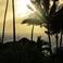 Вид через сад на океан, отель Le Maitai Bora Bora