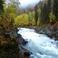Горная река Коргон