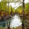 Осень на реке Коргон