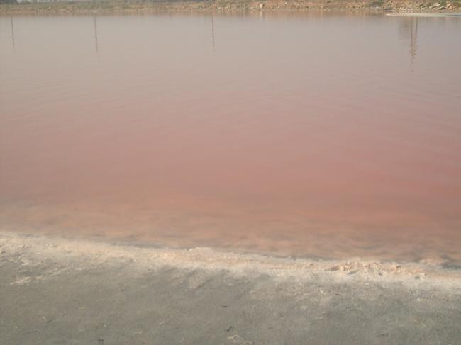 Соленое озеро-рядом