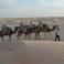 Туристический караван в Сахаре