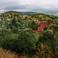 """Селение живописно """"разбросано"""" по горным склонам Карпат (Ворохта)"""