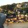 Берег Розового гранита. Фото 4