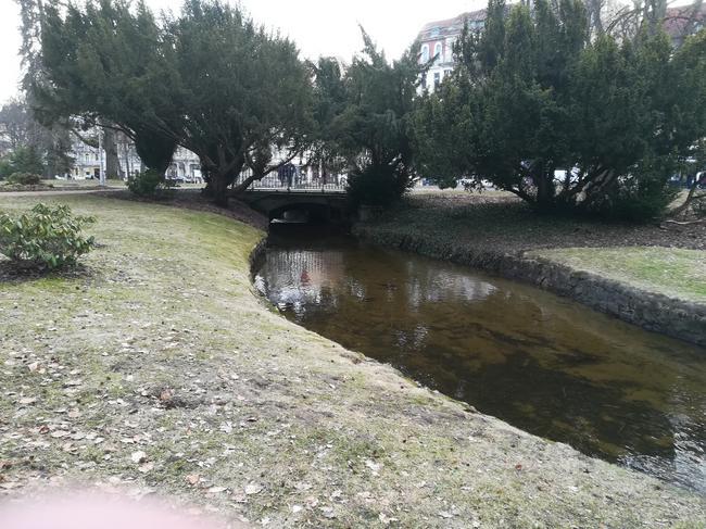 Парк в Марианских Лазнях