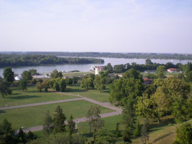 Слияние Савы и Дуная