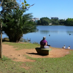Сан-Паулу, парк Ибирапуэра