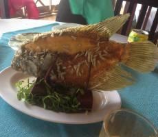 Обед на острове Дракона