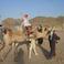Экскурсия Сафари-Джип....катаюсь на верблюде