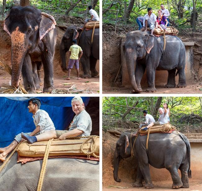 Катание на слоне.