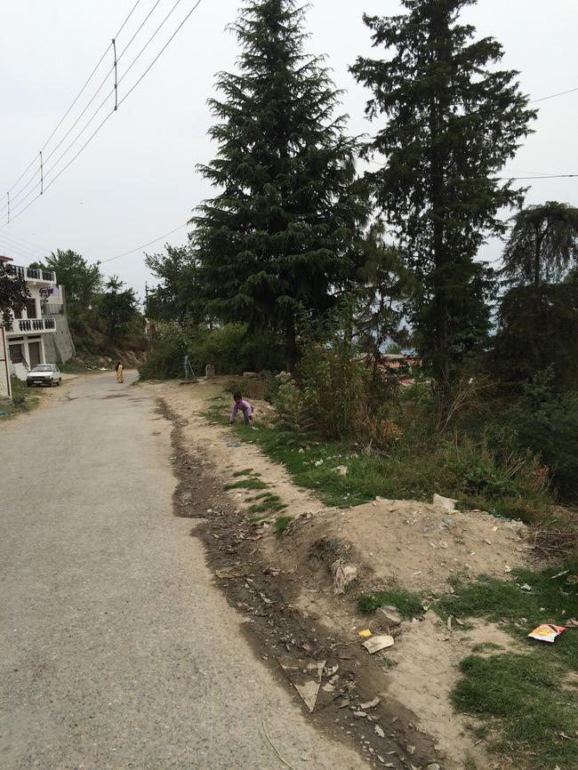 дорога в городе Чилинаула, около ашрама Бабаджи