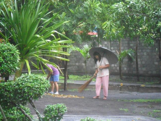 балетные па под дождем