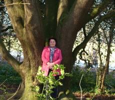 В парке замка старинных деревьев не счесть!