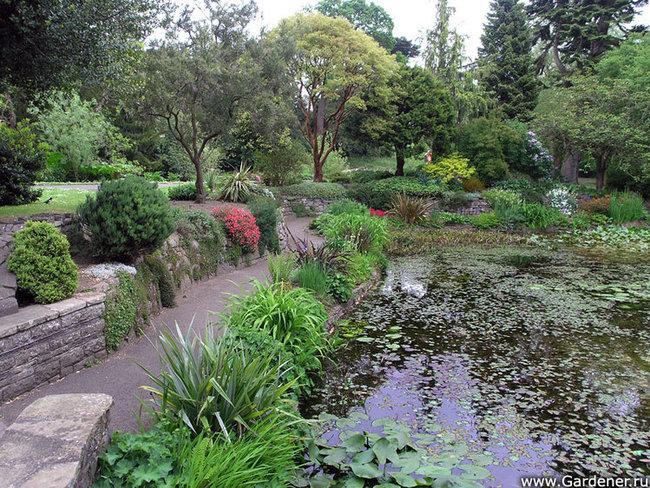 Национальные Ирландские ботанические сады