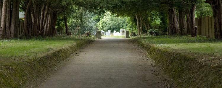 Аллея к старинному кладбищу у костела