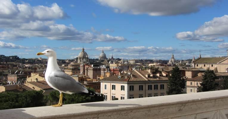 Над крышами Вечного города