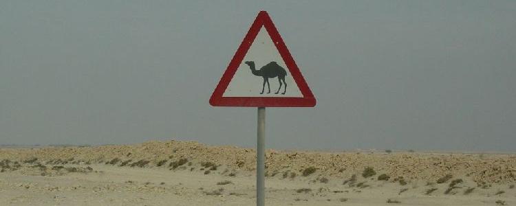 Знак в пустыне