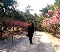 Парк Ихэюань - весь в цвету
