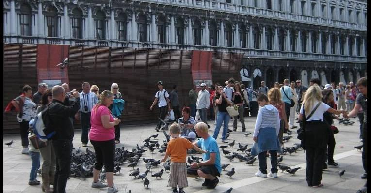 Голуби на площади