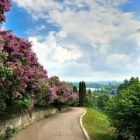 Ботанический сад имени А.В. Фомина