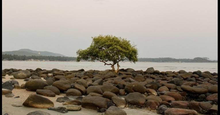 природа пляжа
