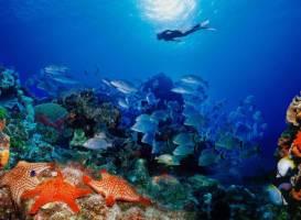 Морской парк Кайо Пьедрас