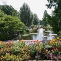 Новый ботанический сад