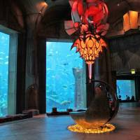 Океанариум Затерянные палаты
