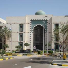 Аль-Аин Университет Объединенных Арабских Эмиратов
