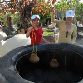 Источники Бинь Чау