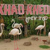 Зоопарк Као Кео