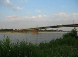 Мост кардинала Фрингса