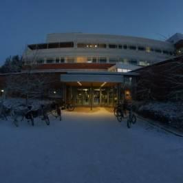 Университет Лапландии