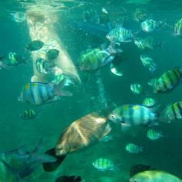 Центр морских путешествий Marina Hut Tour