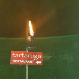 Tartaruga Restaurant & Bar