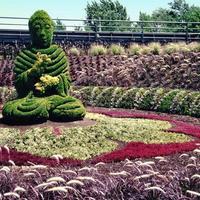 Будда Джаянти Парк