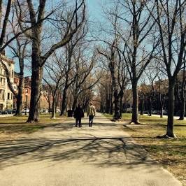 Публичный парк Бостона