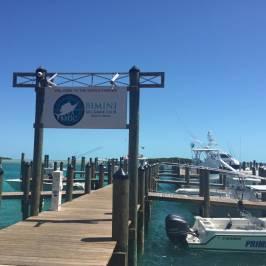 Bimini Big Game Resort and Marina