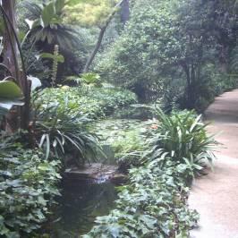 Историко-ботанический сад
