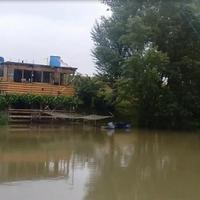 The Danube Wetlands