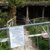 Tempio di Segesta (Tempio Influenza Greca)