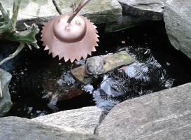 Инсектарий Niagara Parks Butterfly Conservatory