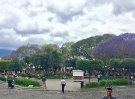 Площадь (Центральный парк)