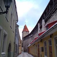 Таллинская городская стена