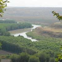 Tigris River (Tigri)